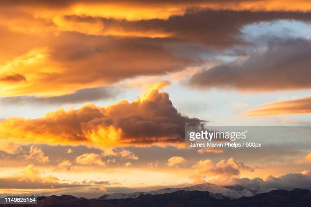 january gold - henderson nevada stock pictures, royalty-free photos & images