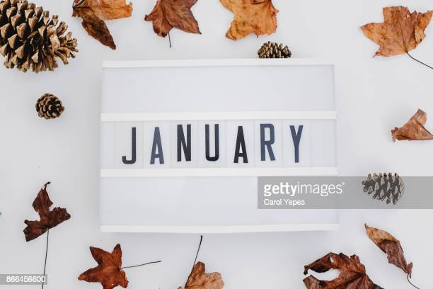 january lighbox in white background