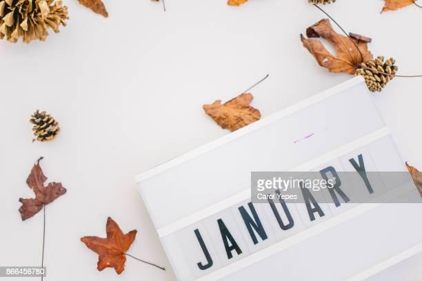 january lighbox in white background - gennaio foto e immagini stock