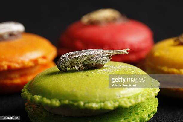 Production of insects is seen at Micronutris company the leader in Europe in the human diet based on insects on January 9 2017The term entomophagy...