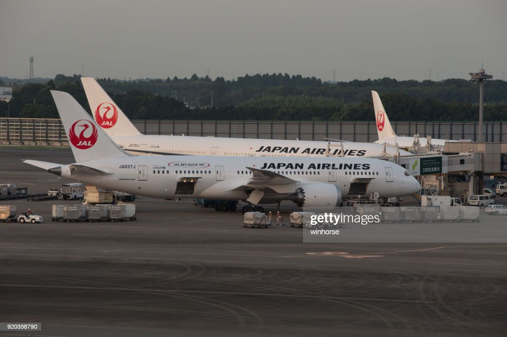 Japan Airlines (JAL) : Stock Photo