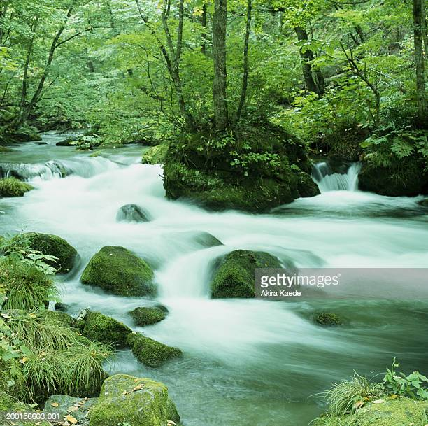 Japan, Aomori Prefecture, Towadako, Oirase River (long exposure)