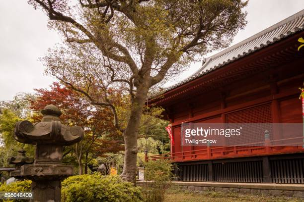 japan buddhism temple - kanto region stock photos and pictures