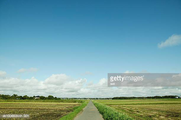 Japan, Chiba, road in countryside
