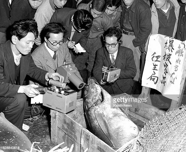 Japan - File photo shows officials measuring radiation levels of a tuna landed at the Tsukiji Market in Tokyo from the Fukuryu Maru No. 5 on March...