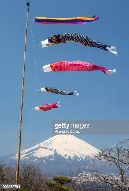 Japan, Goremba City, Koinobori celebration and Mount Fuji.