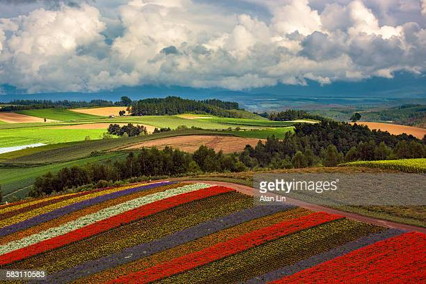 Japan Hokkaido landscape