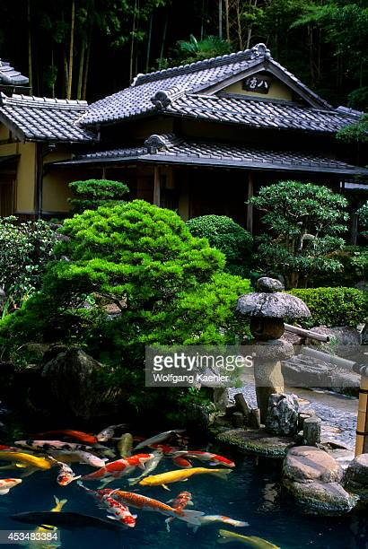 Oriental Garden Restaurant Stock Photos and Pictures | Getty Images