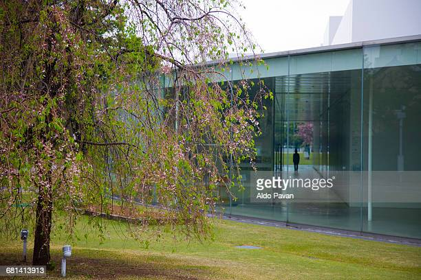 japan, kanazawa - museo de arte contemporáneo fotografías e imágenes de stock