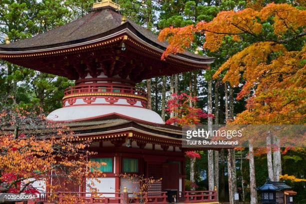 japan, kumano kodo, koya san, garan, buddhist temple - danjo garan stock-fotos und bilder