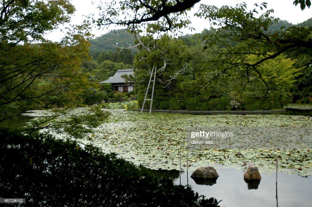 Japan Kyoto Der Zen Garten Des Ryoan Ji Tempel In Kyoto Wurde