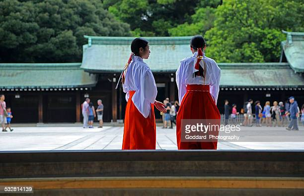 japan: meiji shrine in tokyo - shrine stock pictures, royalty-free photos & images