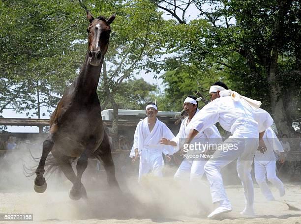 MINAMISOMA Japan Men chase a horse in Minamisoma Fukushima Prefecture on the last day of the threeday Soma Nomaoi traditional wild horse chase...