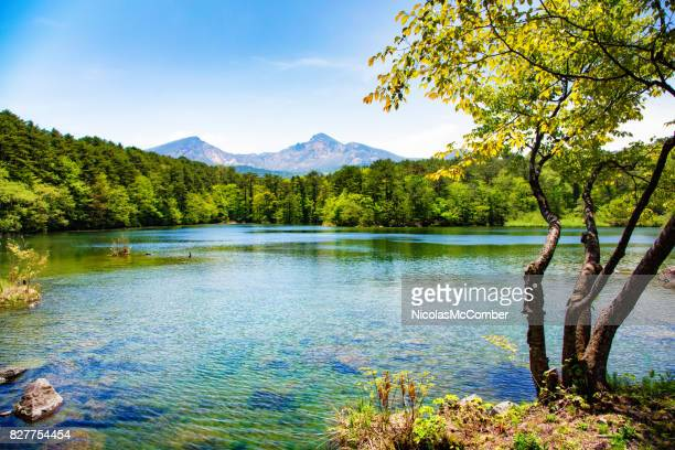 japan mount bandai with lake and tree in springtime - may stock pictures, royalty-free photos & images