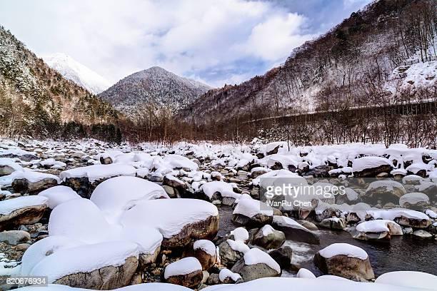 Japan, Nagano Prefecture, Azusagawa, Kamikochi National Park, Mt Hotaka, Azusa River passing through forest