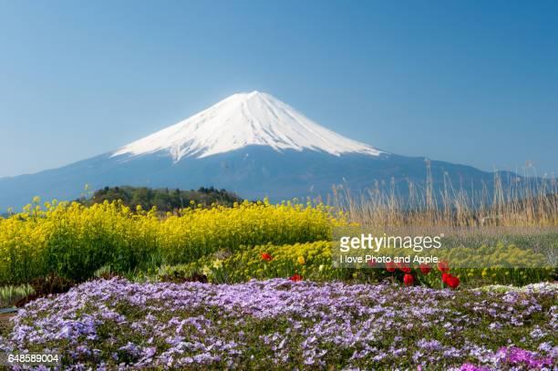 japan scenery - fuji hakone izu national park stock photos and pictures