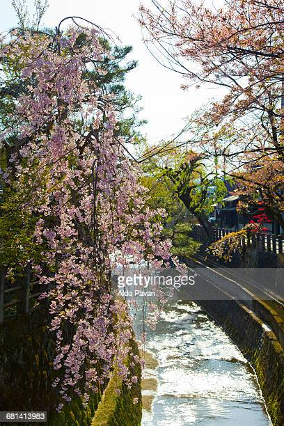 japan, takayama - takayama city stock pictures, royalty-free photos & images
