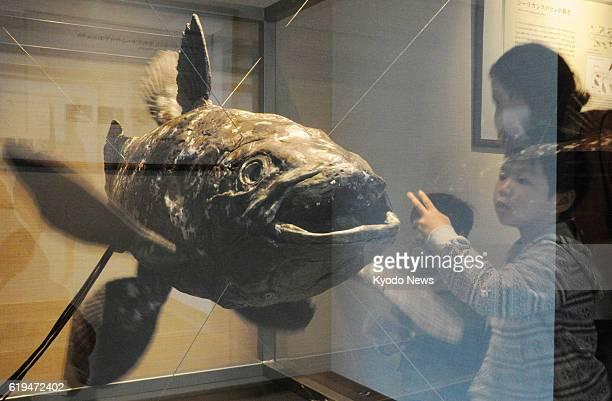 IWAKI Japan The Aquamarine Fukushima aquarium in Iwaki Fukushima Prefecture begins displaying a 12meterlong coelacanth robot reproducing movement of...