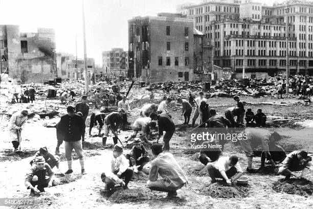 Japan - This file photo shows a disaster area in Nihombashi, Tokyo after air raids. Mobilized students plant pumpkin seeds to increase food...