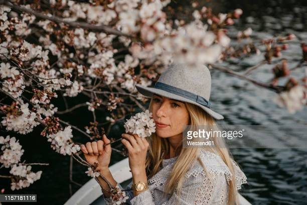 japan, tokio, chidorigafuchi park, woman in rowing boat smelling at cherry tree blossom - hanami stock pictures, royalty-free photos & images
