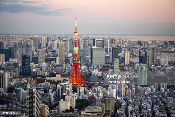 Japan ,Tokyo City, Minato Ku skyline, Tokyo Tower`, panorama.