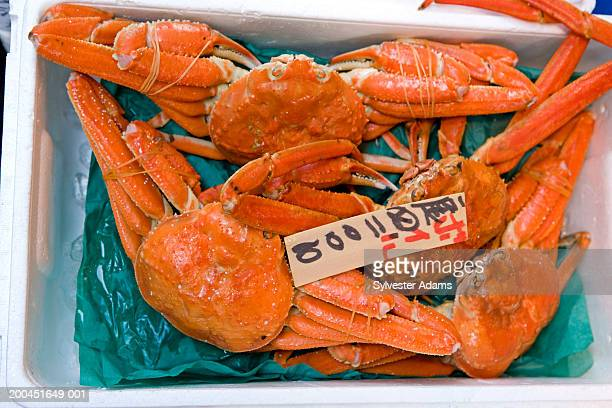 Japan, Tokyo, close-up of giant crab in fish market