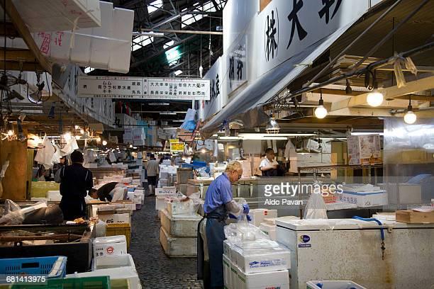 Japan, Tokyo, fish market Tsukiji