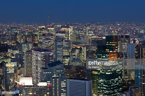 Japan Tokyo Night View