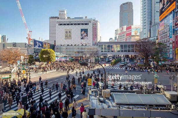 Japan, Tokyo, pedestrians on Shibuya crossing, elevated view