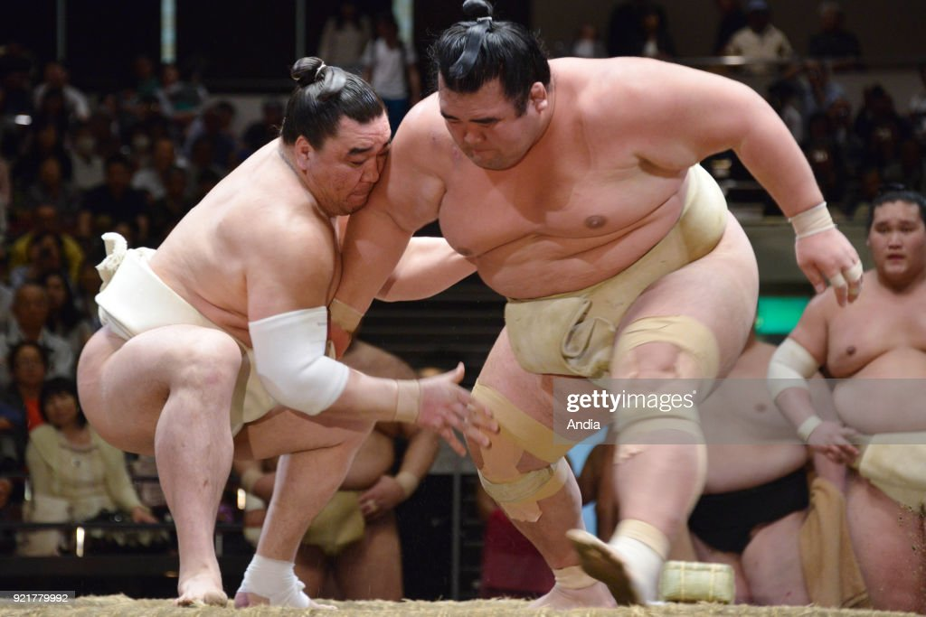 Sumo wrestling. : News Photo