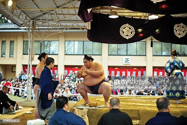 Japan, Tokyo, Yasukuni Shrine, Ceremonial Sumo Tournament