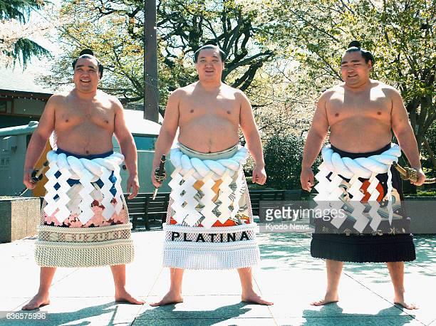 TOKYO Japan Yokozuna Harumafuji Hakuho and Kakuryu perform a ring entering ceremony at Yasukuni Shrine in Tokyo on April 4 2014 The top sumo...