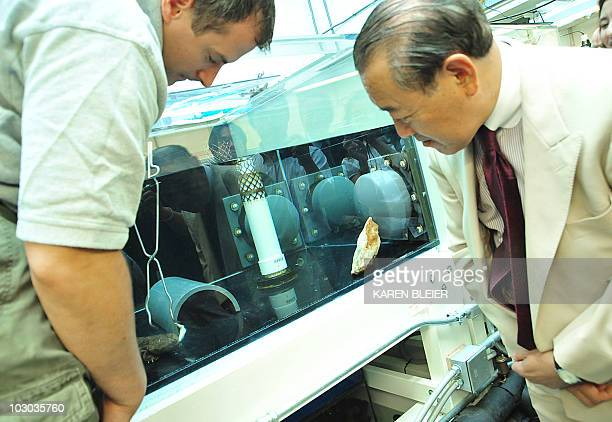 Japanese Ambassador to the United States Ichiro Fujisaki watches a zookeeper feed a Japanese Giant Salamander on July 22 2010 during the...