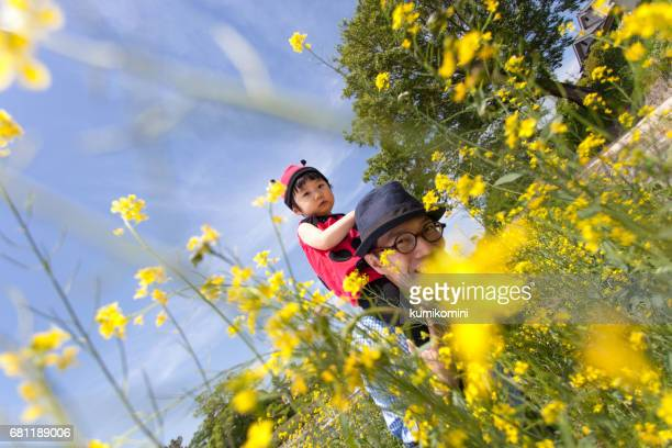 Japanese baby girl in ladybird costume piggyback on her father