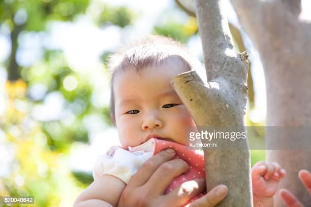 Japanische Mädchen sitzen auf Baum