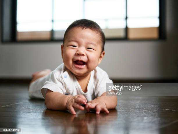 japanese baby six months old - asian stock pictures, royalty-free photos & images