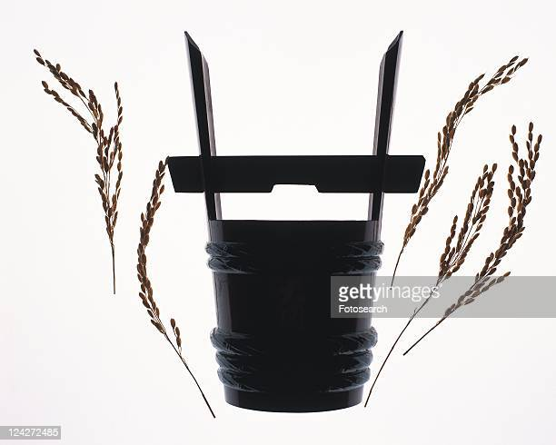Japanese bucket for Sake and rice plants, front view, white background