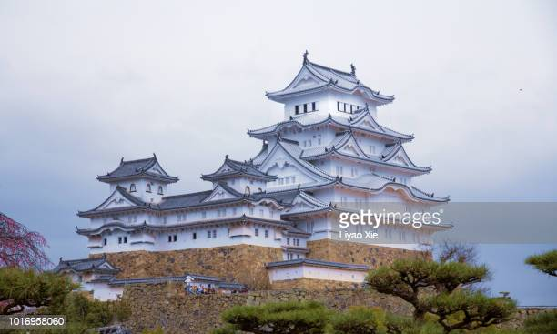 japanese castle with sakura blossom - liyao xie stock pictures, royalty-free photos & images