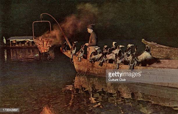 Japanese Cormorant Fishing in Gifu Prefecture during late Meiji rule The sport practised for a thousand years and to this day involves the crew of...