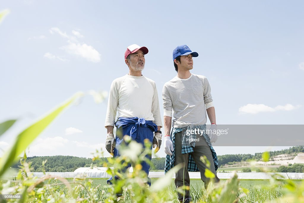 Japanese famers on field : Stock Photo