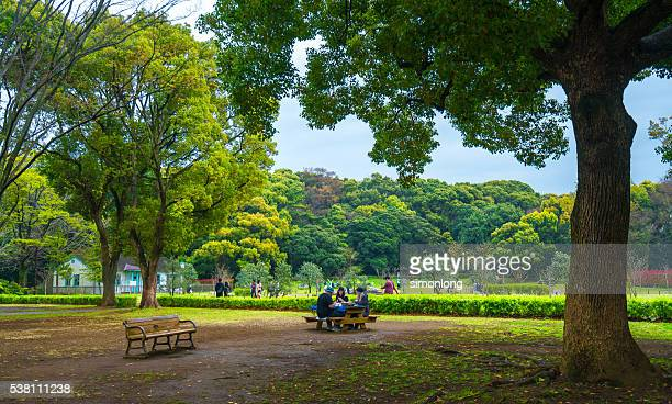 japanese family picnic in the park ,tokyo japan - 公園 ストックフォトと画像