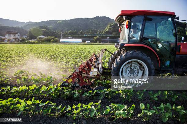 japanese farmer driving red tractor through a field of soy bean plants. - 農業機械 ストックフォトと画像