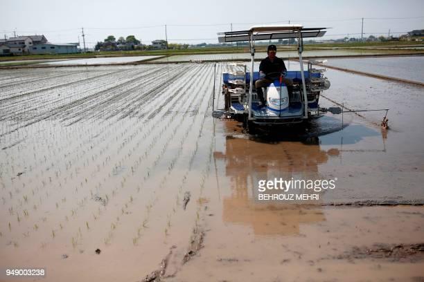 Japanese farmer Yuichi Ogura plants rice seedlings on his paddy in Kazo city Saitama prefecture on April 20 2018