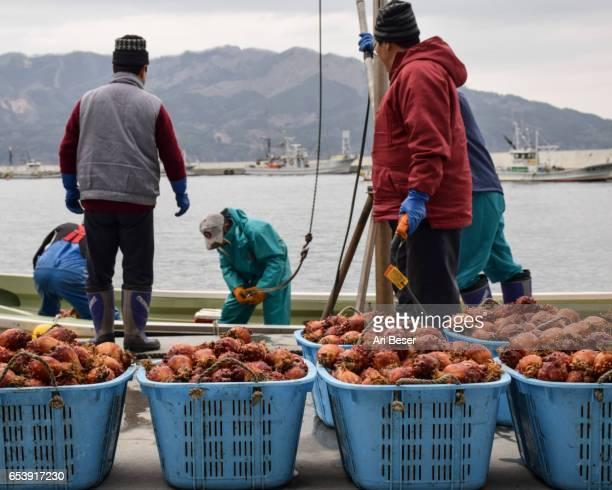 Japanese Fisherman