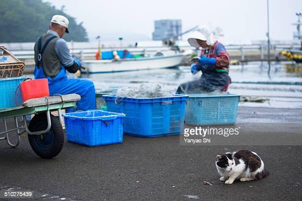 Japanese fishing port