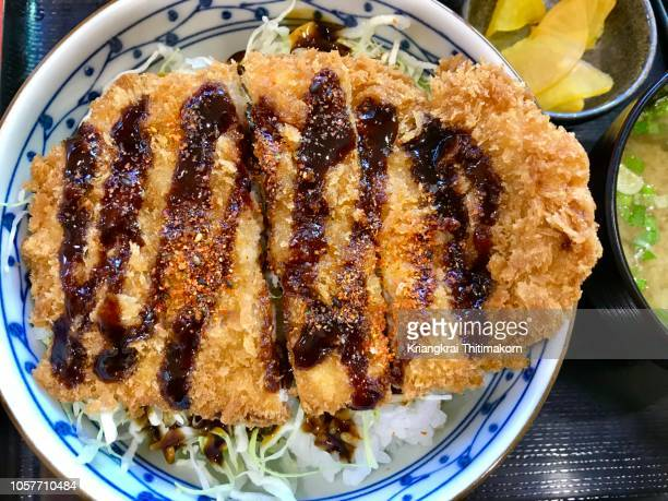 japanese food:  tonkatsu pork. - tonkatsu photos et images de collection