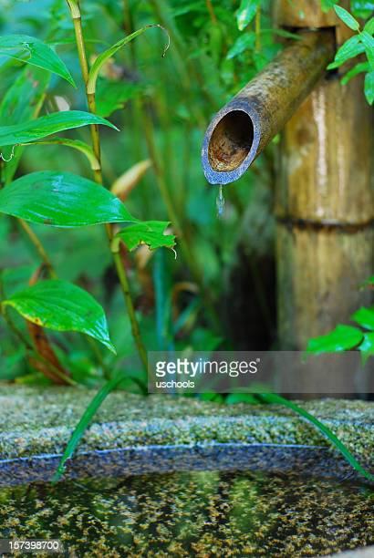 Japanischer Garten: Bambus-Springbrunnen