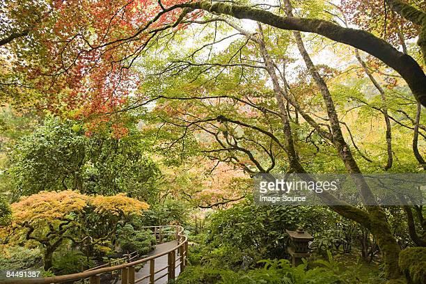 japanese garden butchart gardens - vancouver island stockfoto's en -beelden
