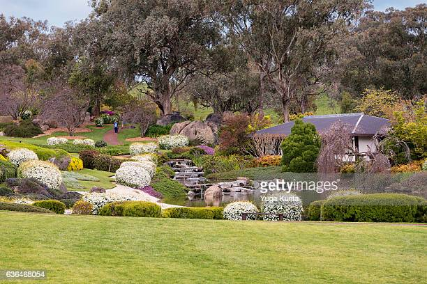 japanese garden & cultural centre, cowra, nsw, australia - japanese garden stock photos and pictures