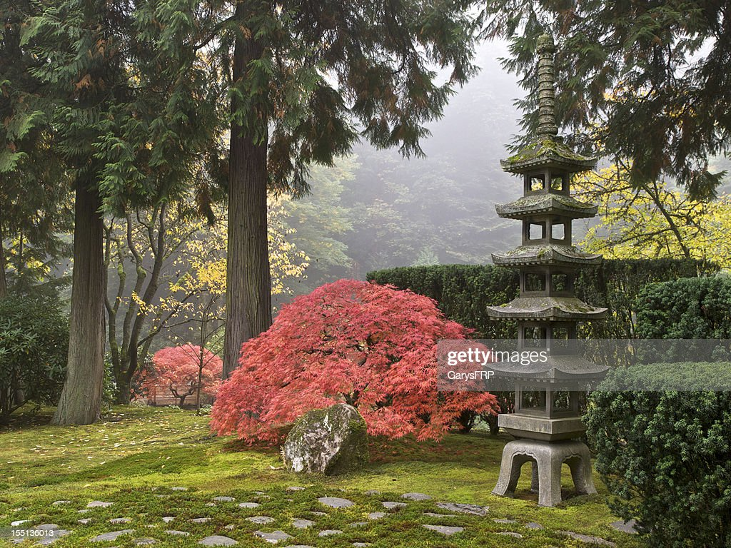 Japanese garden fall colors sapporo pagoda lantern portland oregon stock photo getty images for Portland japanese garden free day